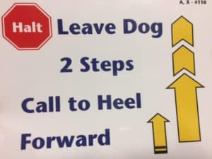 Introduction to Rally Obedience @ Our Gang Pet Services | River Vale | New Jersey | United States