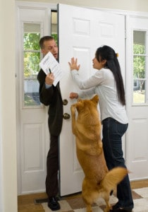 Impulse Control @ Our Gang Pet Services, LLC | River Vale | New Jersey | United States