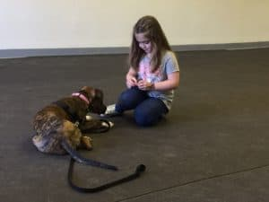 Kidz and Dogz @ Our Gang Pet Services, LLC | River Vale | New Jersey | United States