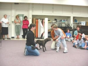 Therapy Dog Prep @ Our Gang Pet Services | River Vale | New Jersey | United States